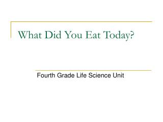 What Did You Eat Today?