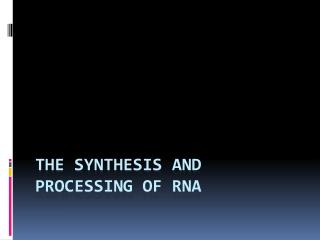 The Synthesis and Processing of RNA
