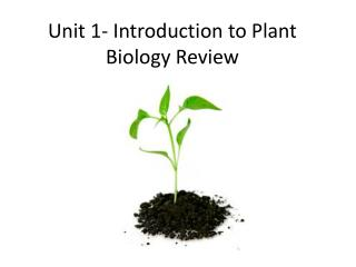 Unit 1- Introduction to Plant Biology Review