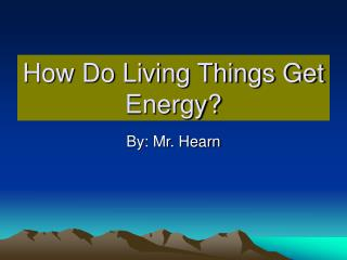 How Do Living Things Get Energy?