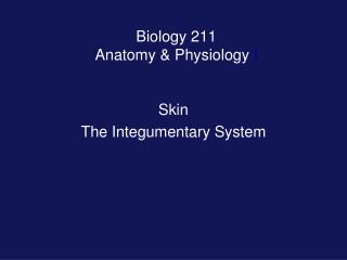 Biology 211 Anatomy  Physiology I