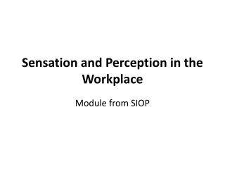 Sensation and Perception in the Workplace