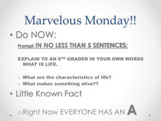 Marvelous Monday!!