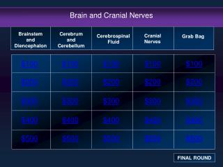 Brain and Cranial Nerves