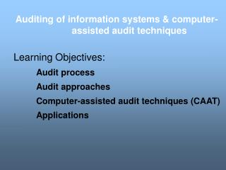 Auditing of information systems & computer-assisted audit techniques