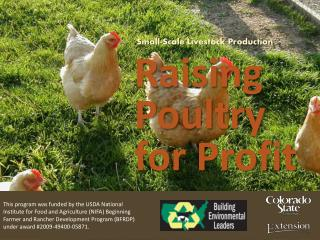 Small-Scale  Livestock  Production Raising Poultry for Profit
