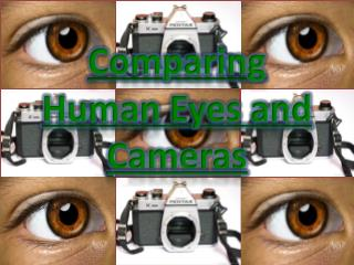 Comparing Human Eyes and Cameras