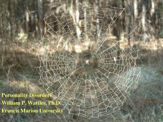 Personality Disorders  William P. Wattles, Ph.D. Francis Marion University