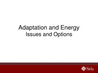Adaptation and Energy Issues and Options