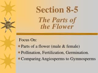 Section 8-5