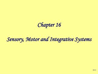 Chapter 16 Sensory, Motor and Integrative Systems