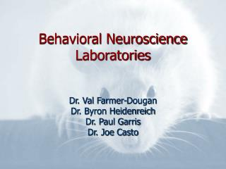 Behavioral Neuroscience Laboratories
