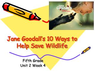 Jane Goodall's 10 Ways to Help Save Wildlife