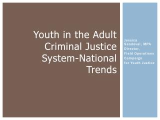 Youth in the Adult Criminal Justice  System-National Trends