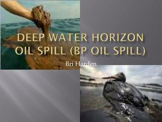 Deep Water Horizon Oil Spill (BP oil spill)