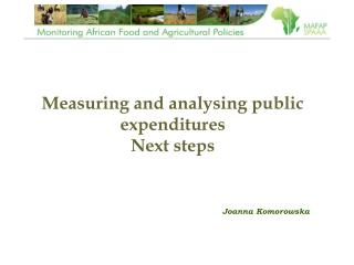 Measuring and analysing public expenditures Next steps