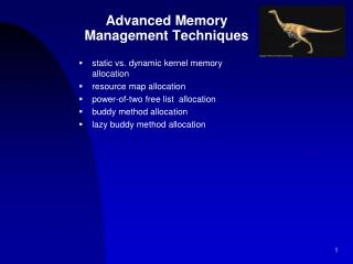 Advanced Memory  Management Techniques