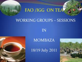 FAO /IGG  ON TEA     WORKING GROUPS – SESSIONS   IN MOMBAZA 18/19 July 2011