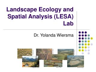 Landscape Ecology and Spatial Analysis LESA Lab