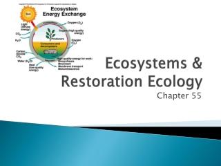 Ecosystems & Restoration Ecology