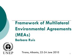 Framework of Multilateral Environmental Agreements (MEAs) Barbara Ruis