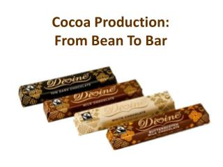 Cocoa Production: From Bean To Bar