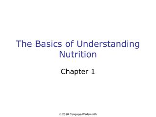 The Basics of Understanding Nutrition