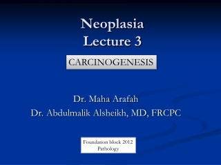 Lecture 13 Angiogenesis and tumor growth