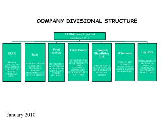 COMPANY DIVISIONAL STRUCTURE