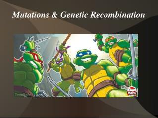 Mutations & Genetic Recombination
