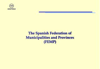 The Spanish Federation of  Municipalities and Provinces (FEMP)