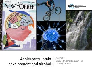 Adolescents, brain development and alcohol