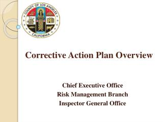 Corrective Action Plan Overview
