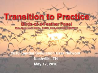 Transition to Practice Birds-of-a-Feather Panel Mike Nickerson DNPc, APRN, FNP-BC,CEN, NREMT-P