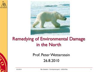 Remedying of Environmental Damage in the North