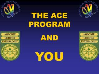THE ACE PROGRAM  AND  YOU