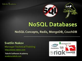 NoSQL Databases