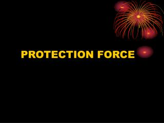 PROTECTION FORCE