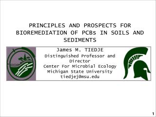 PRINCIPLES AND PROSPECTS FOR BIOREMEDIATION OF PCBs IN SOILS AND SEDIMENTS James M. TIEDJE