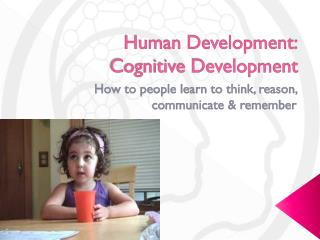 Human Development: 	Cognitive Development