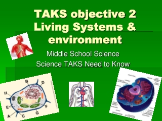 TAKS objective 2 Living Systems & environment
