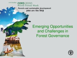 Emerging Opportunities and Challenges in Forest Governance