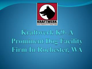 Kraftwerk K9 - Rochester