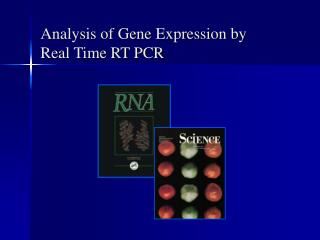 Analysis of Gene Expression by Real Time RT PCR