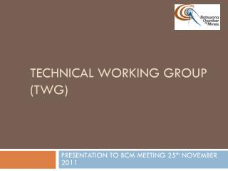 TECHNICAL WORKING GROUP (TWG)