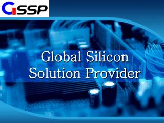 Global Silicon Solution Provider