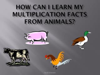 How can I learn my multiplication facts from animals?