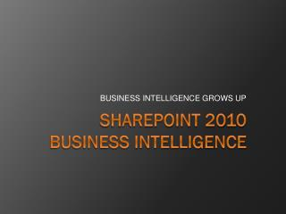 SharePoint 2010 Business Intelligence