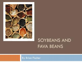 Soybeans  and Fava Beans
