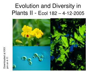 Evolution and Diversity in Plants II -  E col 182 – 4-12-2005